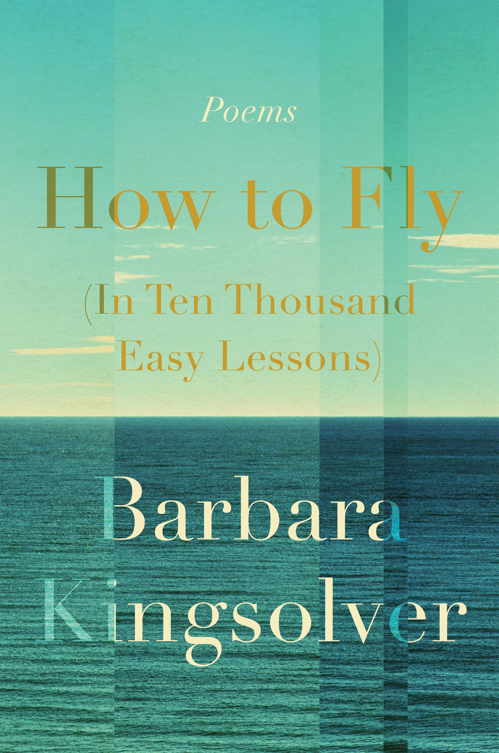 "Image for ""How to Fly (in Ten Thousand Easy Lessons)"""