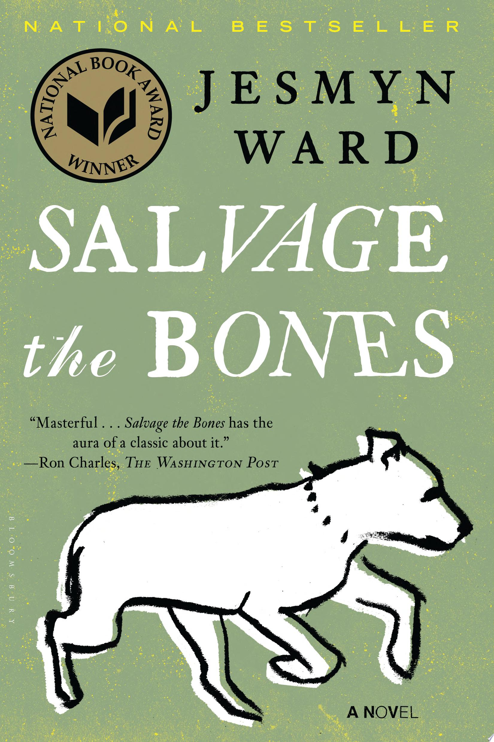 "Image for ""Salvage the Bones"""